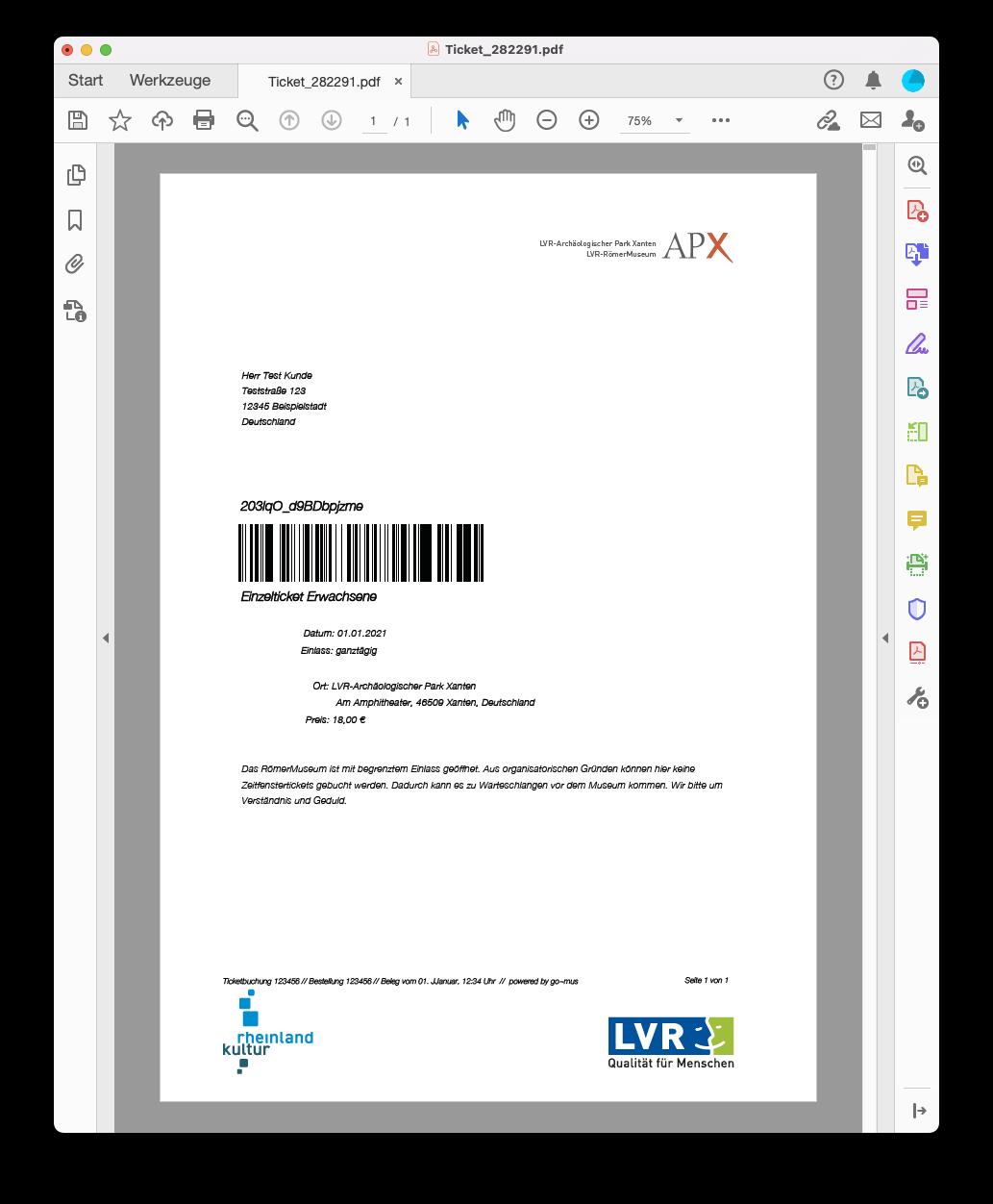Screenshot eines beispielhaften Print@Home Ticket des LVR